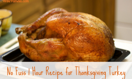 No Fuss 1 Hour Recipe for Thanksgiving Turkey