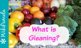 What is Gleaning?